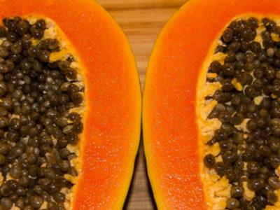 La papaye, parlons-en !