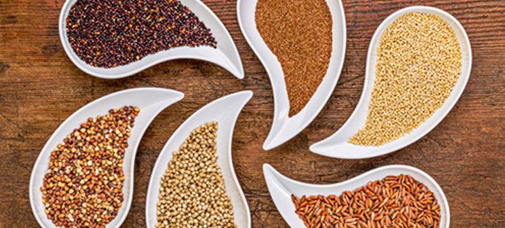 Des graines pleines de trésors et de bienfaits !