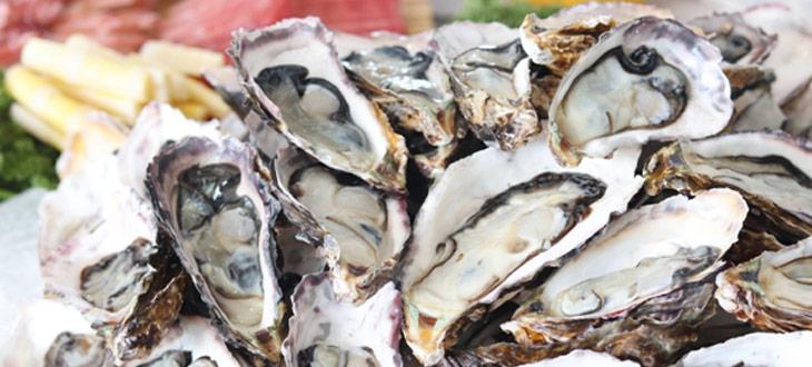 4 trucs à faire avec des coquilles d'huîtres